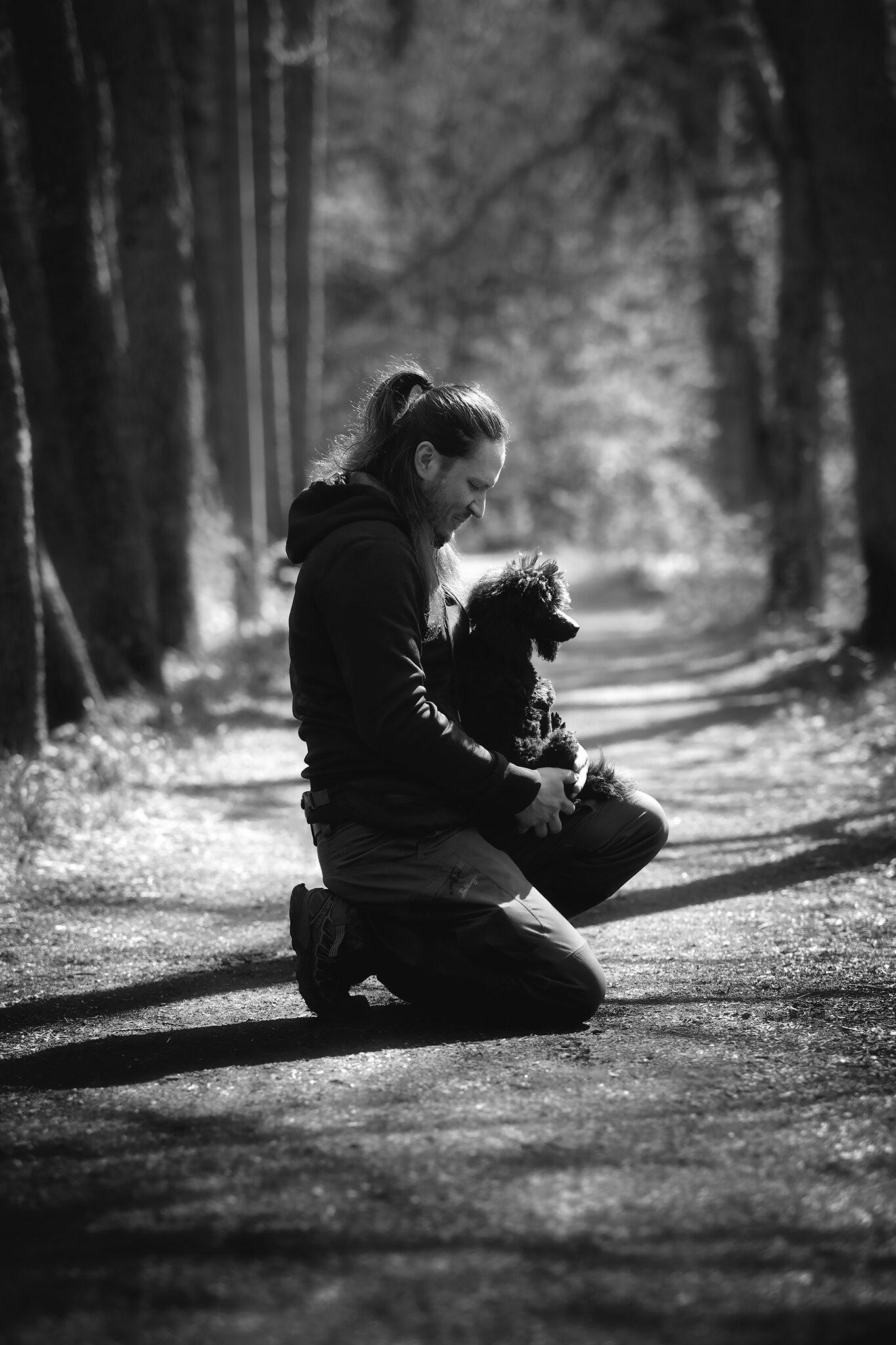portrait male dog muotokuva